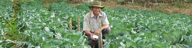 farmer-439914_1280